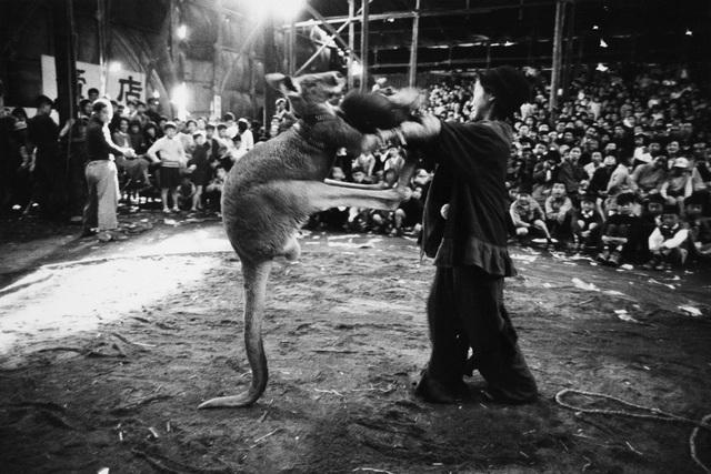 , 'Boxing, Kigure Circus,' 1957-vintage print, IBASHO