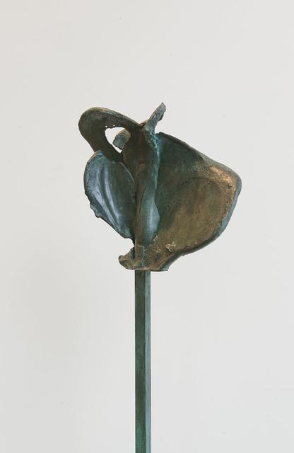 , 'Noeud 5.2 Varia 1,' 2011, Galerie Greta Meert
