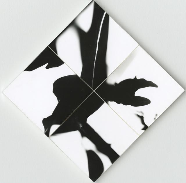 Ray K. Metzker, 'Whimsy 2', 1974, Howard Greenberg Gallery
