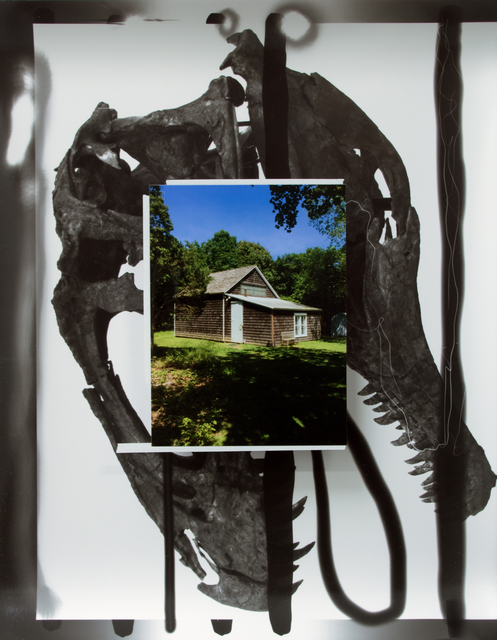 , 'Saurus Series (Pollock),' 2017, Art Bärtschi & Cie | Geneva, Switzerland