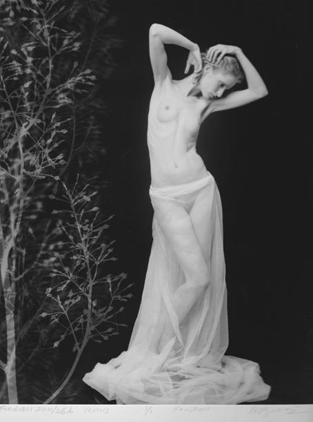 , 'Royal Copenhagen, Figurine no. 1,' 2011, Galeria Katarzyna Napiorkowska