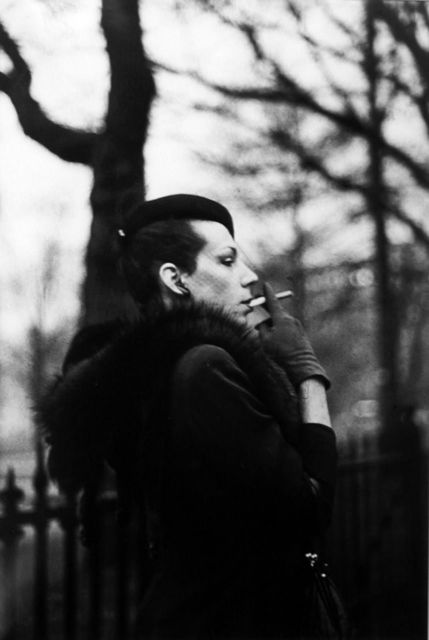 , 'Ivy in the Boston Garden,' ca. 1972, MM Fine Art