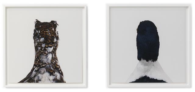 , 'Untitled No. 15,' 19982007, Hauser & Wirth