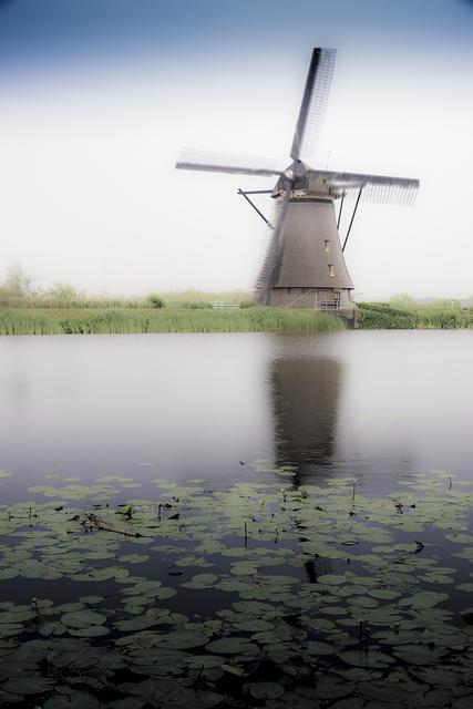 , 'Dutchman,' 2018, Foto Relevance