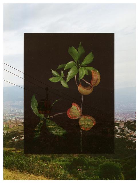 , 'MDE Redux/ Azuceno,' 2018, David Klein Gallery