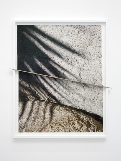 , 'Joshua Tree Bronze Push (Shadows Half Split),' 2016, Galerie Christophe Gaillard