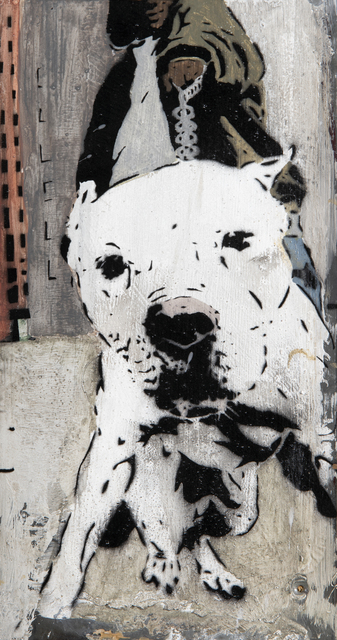 Chris Stain, 'Dog 08', 2008, Tate Ward Auctions