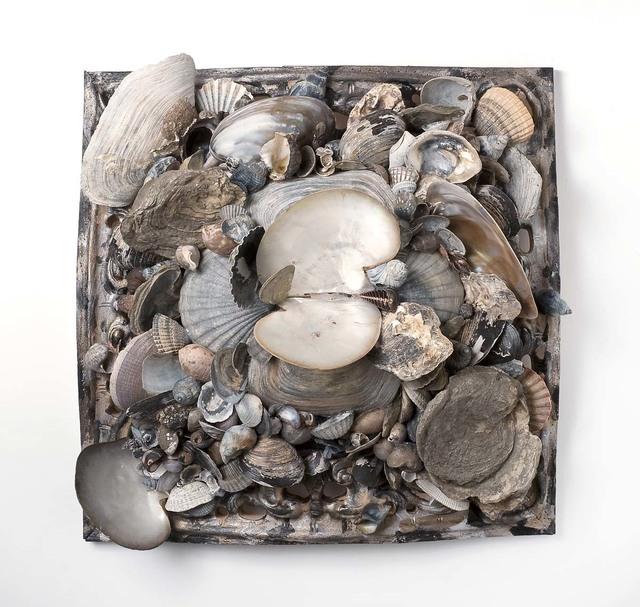 , 'Big Shell Series 1,' 2010, Bill Lowe Gallery