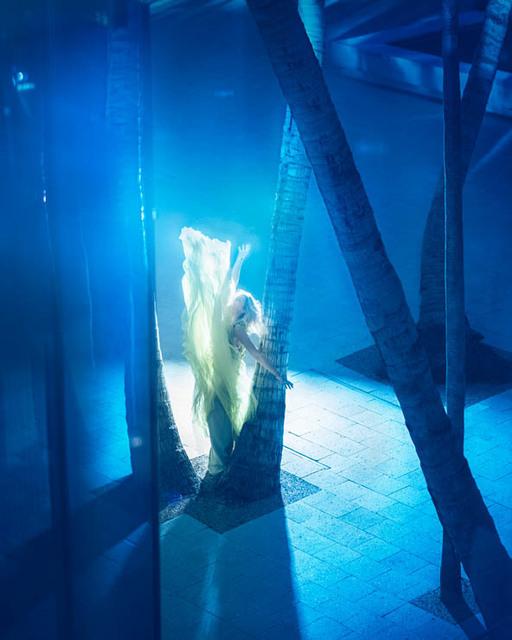David Drebin, 'Yellow Fever', 2018, Immagis Fine Art Photography