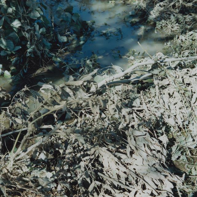 Mikiko Hara, 'Untitled', 2018, MIYAKO YOSHINAGA