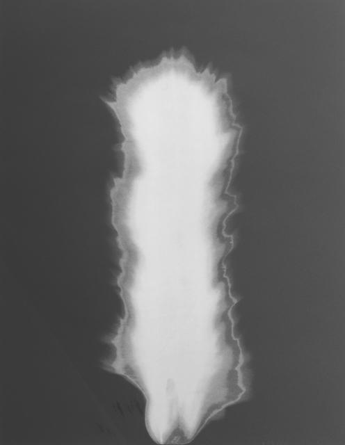Hiroshi Sugimoto, 'In Praise of Shadow', 2000, Print, Lithograph, Yodo Gallery