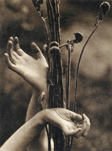 , 'Dana Steichen's Hands,' 1923, Boca Raton Museum of Art