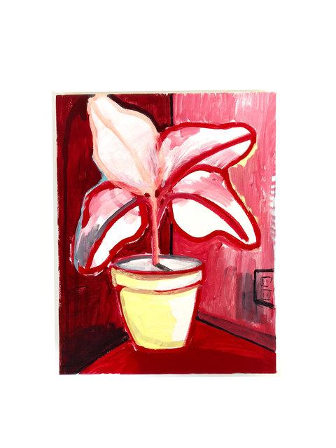 , 'Untitled (House Plant),' 2010-2019, D2 Art