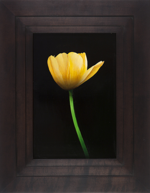 Michael Gregory, 'Untitled (tulip)', 2014, Painting, Oil on panel, Nancy Hoffman Gallery