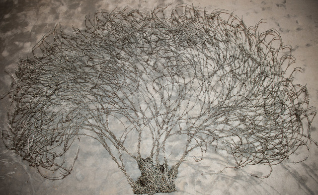 , 'Olive Tree,' 2015, al markhiya gallery