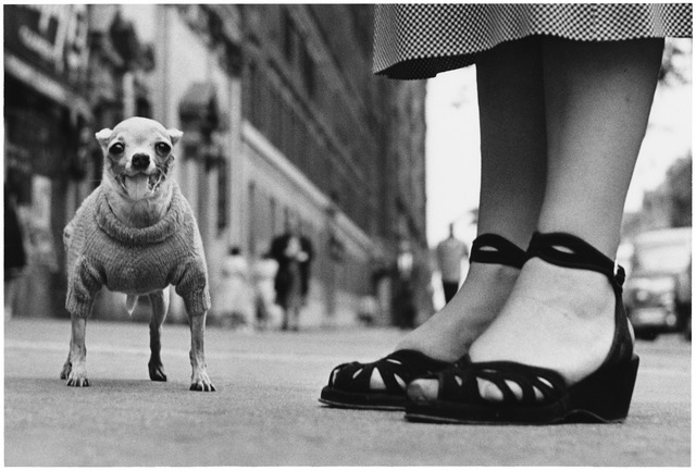 Elliott Erwitt, 'New York City', 1946, Huxley-Parlour