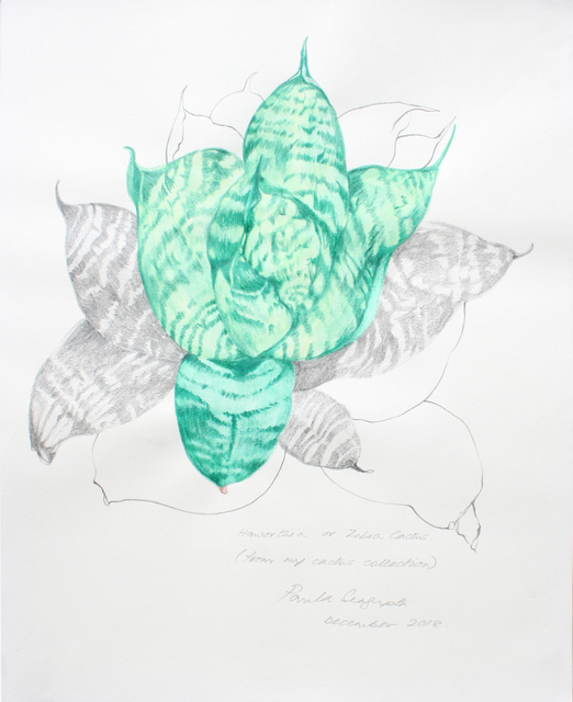 Paula Sengupta, 'The garden of unreason - The cactus drawing', 2018, Gallery Espace