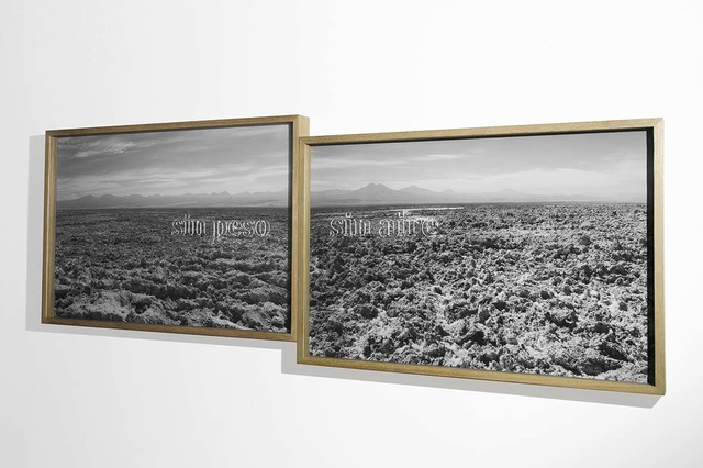 , 'SIN PESO | SIN AIRE (diptych),' 2016, Galeria Raquel Arnaud