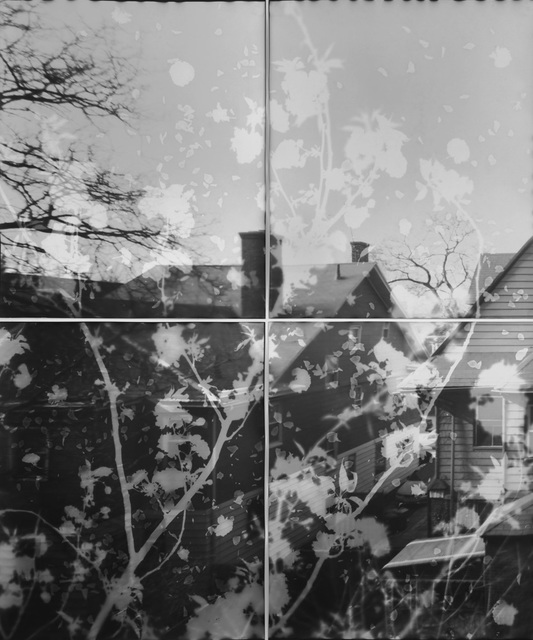 , 'Untitled form Another Sun (Cherry Blossoms 03),' 2014, IBASHO
