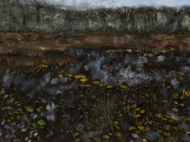 Reggie Burrows Hodges, 'Pace House Lily Pond Horizon', 2019, Dowling Walsh