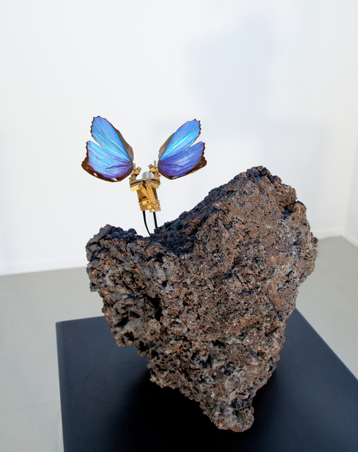 , 'Butterfly With Black Volcano Stone,' 2013, Mario Mauroner Contemporary Art Salzburg-Vienna