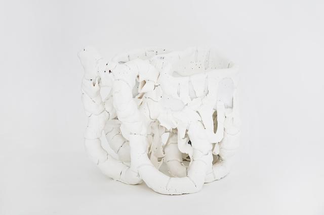 , 'White Species n1601,' 2016, Side Gallery