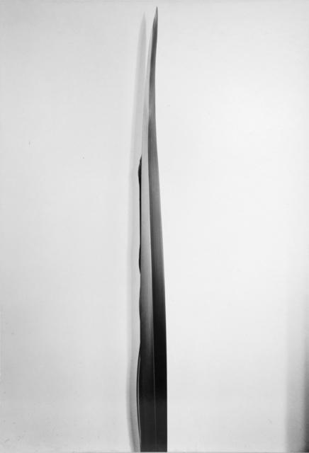 , 'Flax,' ca. 1926, Bruce Silverstein Gallery