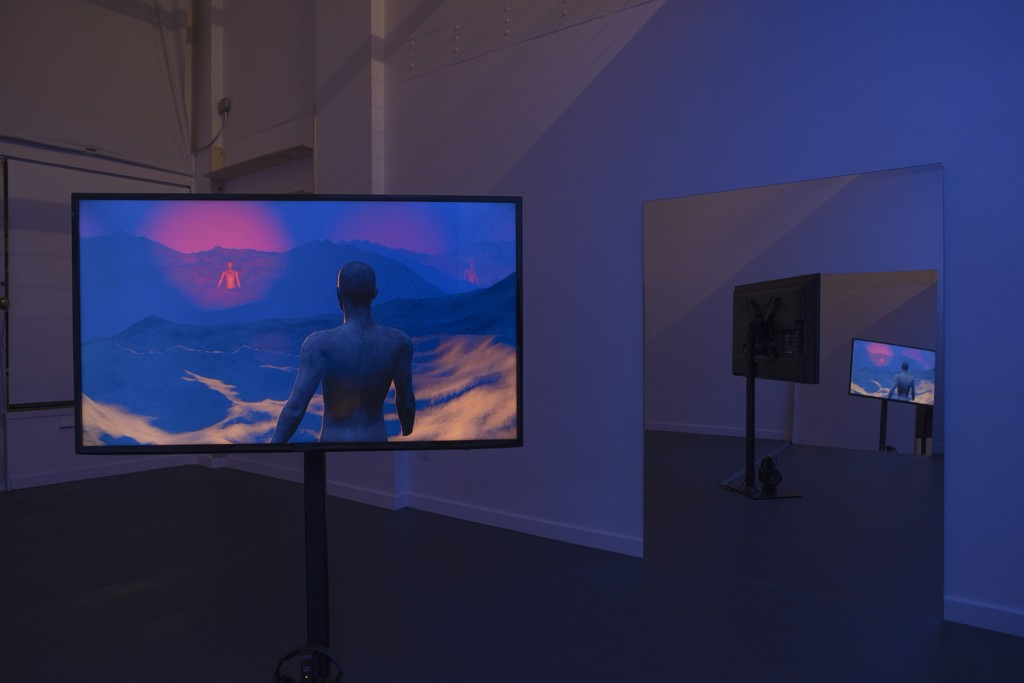 The Valley, installation view at R/SF projects, 2017.
