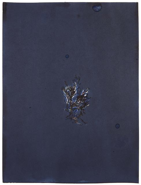 , 'For Anna, Vol. II, Plate 27,' 2017, EUQINOM Gallery