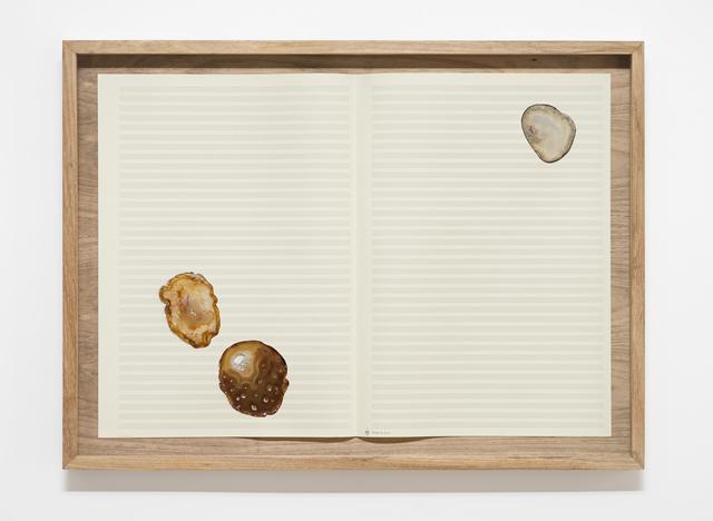 , 'Fiume 15 da série Achates,' 2015, Silvia Cintra + Box 4