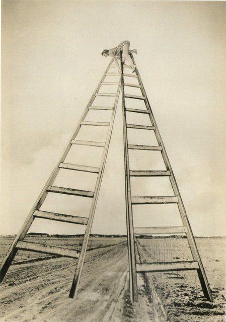 , 'Sueño Nº 25, Perspectiva,' 1949, Vasari