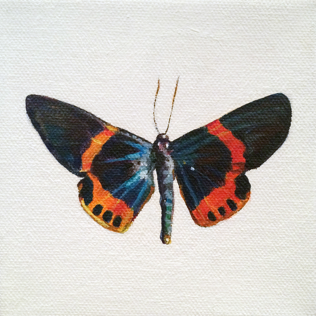 , 'Moth,' 2016, BoxHeart