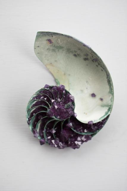 , 'Amethyst Nautilus Shell,' 2017, Hashimoto Contemporary