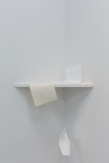 Otto Berchem, 'Mobilized (shelf #1)', 2017, Instituto de Visión