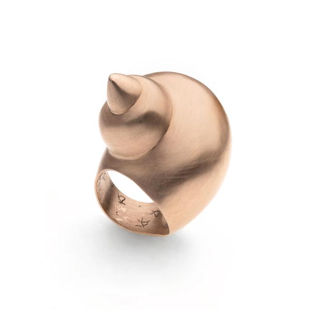 , 'Shell (Neptunea Angulata),' 2014, Elisabetta Cipriani