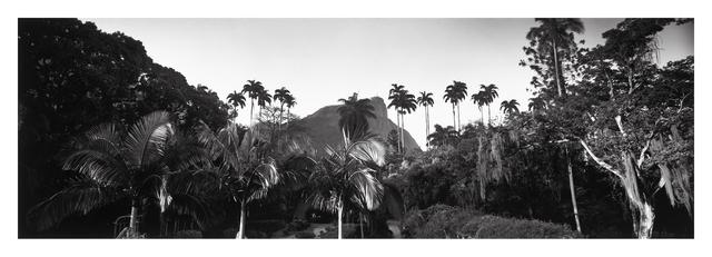 , 'Jardim Botânico,' , Galeria Tempo