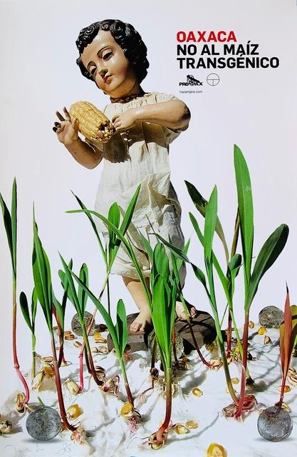 Francisco Toledo, 'Niño del Maíz (Child of the Corn)', 2015, Sin Título Gallery