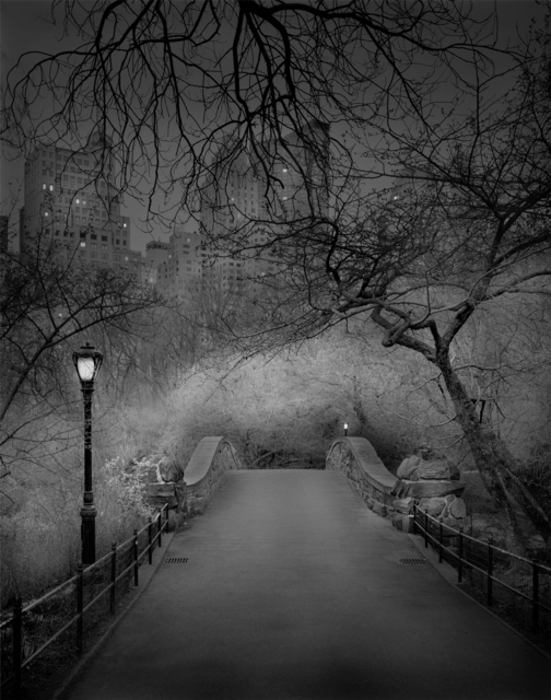 , 'Deep In A Dream - Central Park - Gapstow Bridge,' 2009, Holden Luntz Gallery