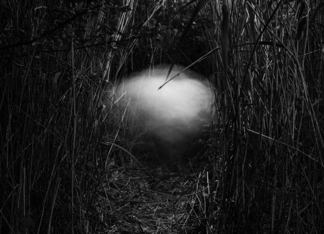 , 'Untitled #159,' 2013, LWM18