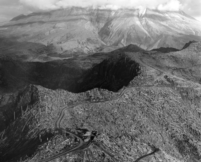 , 'Aerial view: logging site near Spud Mt., 5 miles NW of Mt. St. Helens, Wash.,' 1983, Etherton Gallery