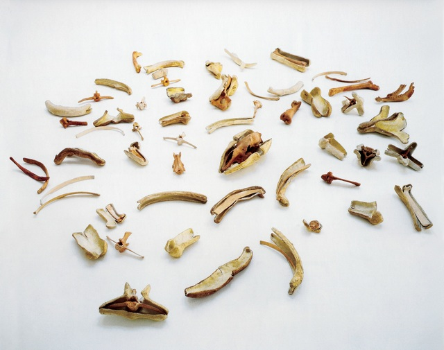 , 'Bones and Their Containers (To Martin Cassidy),' 1971, Mitchell-Innes & Nash