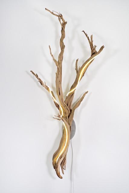 , 'Untitled Wood Series #3,' 2014, Voltz Clarke