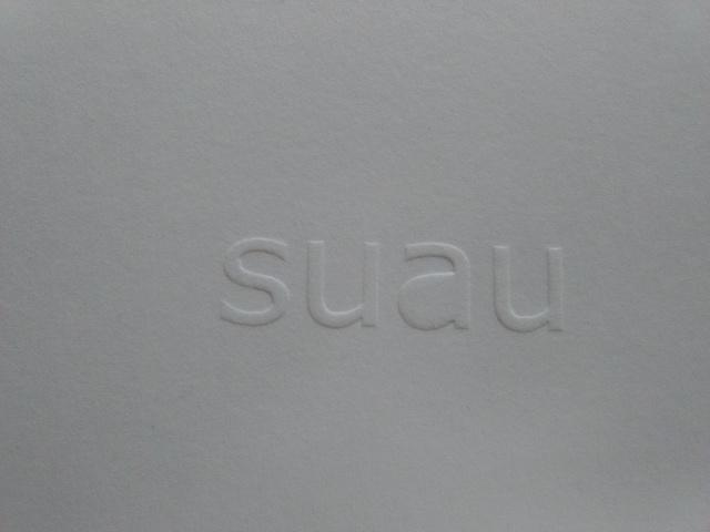 , 'Suau,' 2018, LLS Paleis