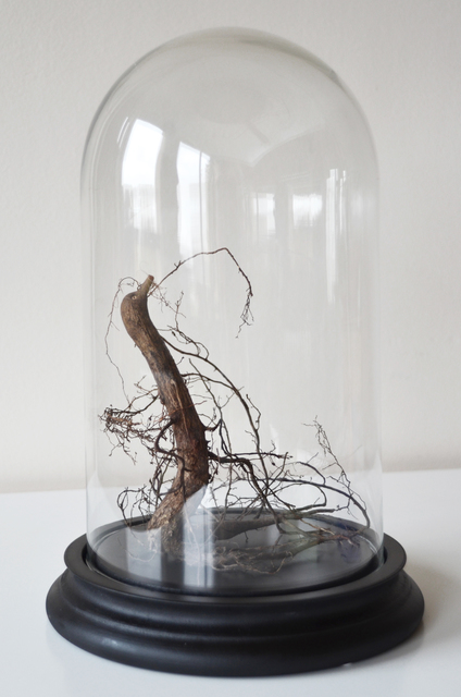 , 'Racinoupiale #9,' 2016, Micheko Galerie