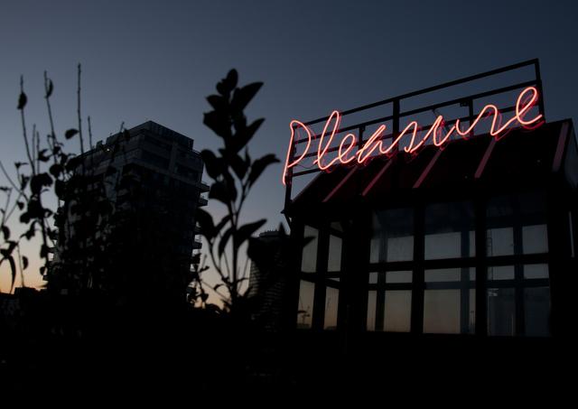 , 'Pleasure,' , Art Night London