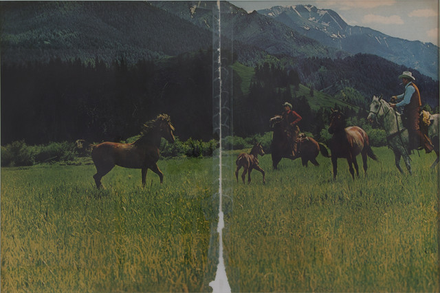, 'Untitled (cowboy),' 2016, Los Angeles County Museum of Art