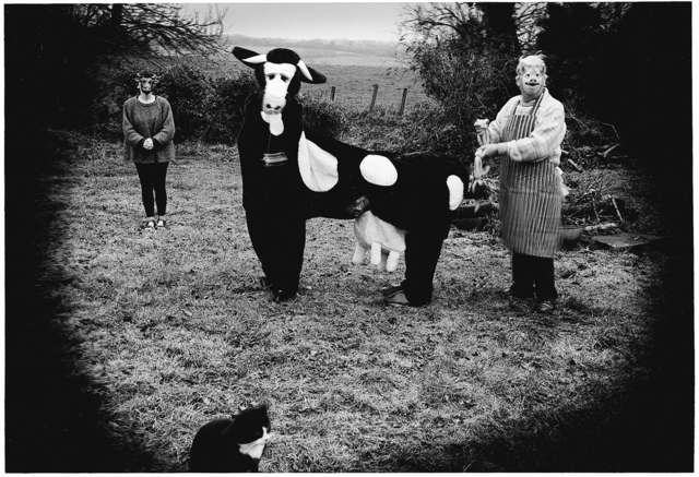 , 'Mad About the Cow,' 2001, Light Work