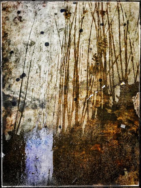 Luca Lionello, 'Oh, so deep within', 2019, Photography, Inkjet print on Kodak metallic paper mounted on light PVC, 11 [HH] Art Gallery