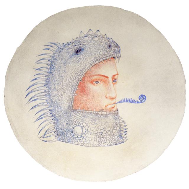 Kahn & Selesnick, 'Iguana Augury  ', date unknown, Carrie Haddad Gallery