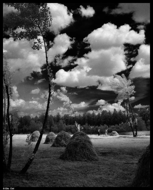, 'Fienagione a Zoppola,' 1963, 3D Gallery